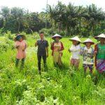 Pemuda dan Masa Depan Pertanian